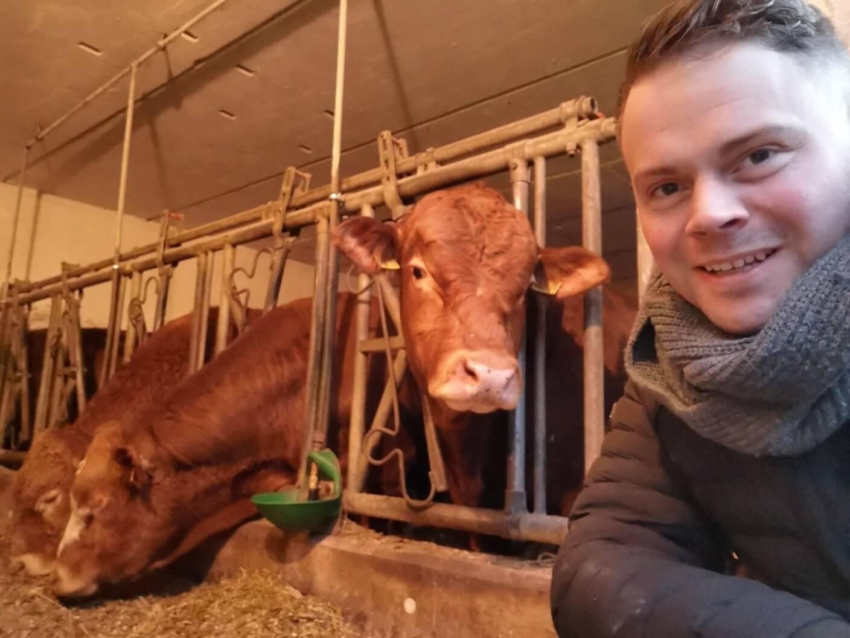 Hendrik Fessel im Stall von Bauer Teichmann aus Niedersachswerfen. Im Hintergrund drei Kühe beim Fressen.
